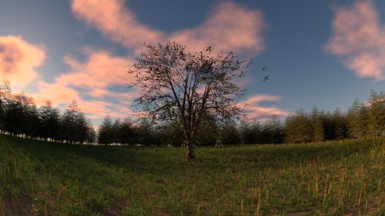 panorama2.png